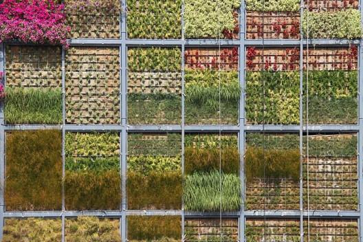 Jardin vertical de fieltro