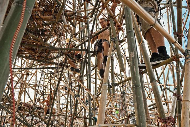 Big Bambú / Starn Studio © Mike + Doug Starn