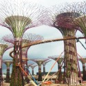 En Construcción: Gardens by the Bay + Supertrees / Wilkinson Eyre + Grant Associates (12) © Bronte Cullum