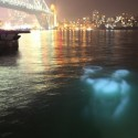 Vivid's Festival of light 2012 Vía Zupi